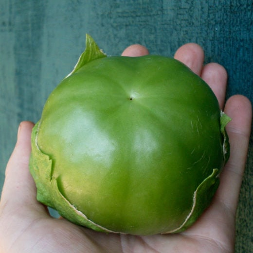 Plaza Latina Giant Green Tomatillo