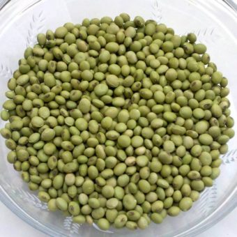 Soybean, Envy (Organic)