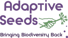 Adaptive Seeds - Bringing Biodiversity Back