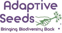 Adaptive Seeds LOgo Bringing Biodiversity Back